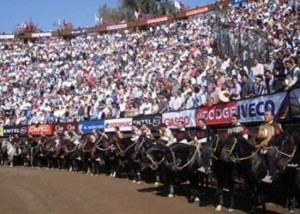 RODEO champion-de-rancagua